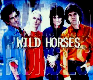The Wild Horses single from Stripped
